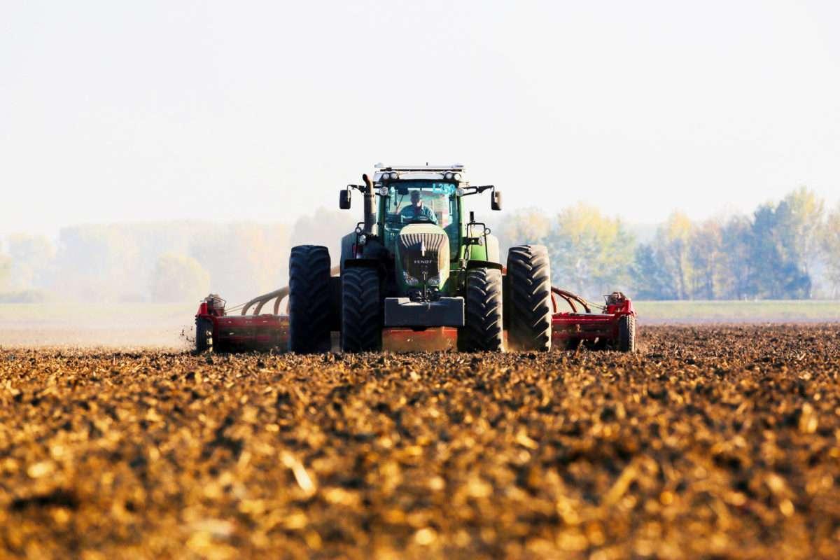 Crop Farming Belje